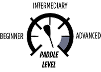 6_PADDLE-LEVEL