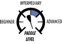 4_PADDLE-LEVEL