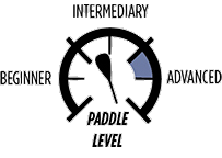 5_PADDLE-LEVEL